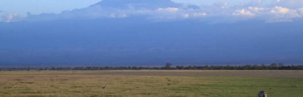 Kenia: Safari por Amboseli